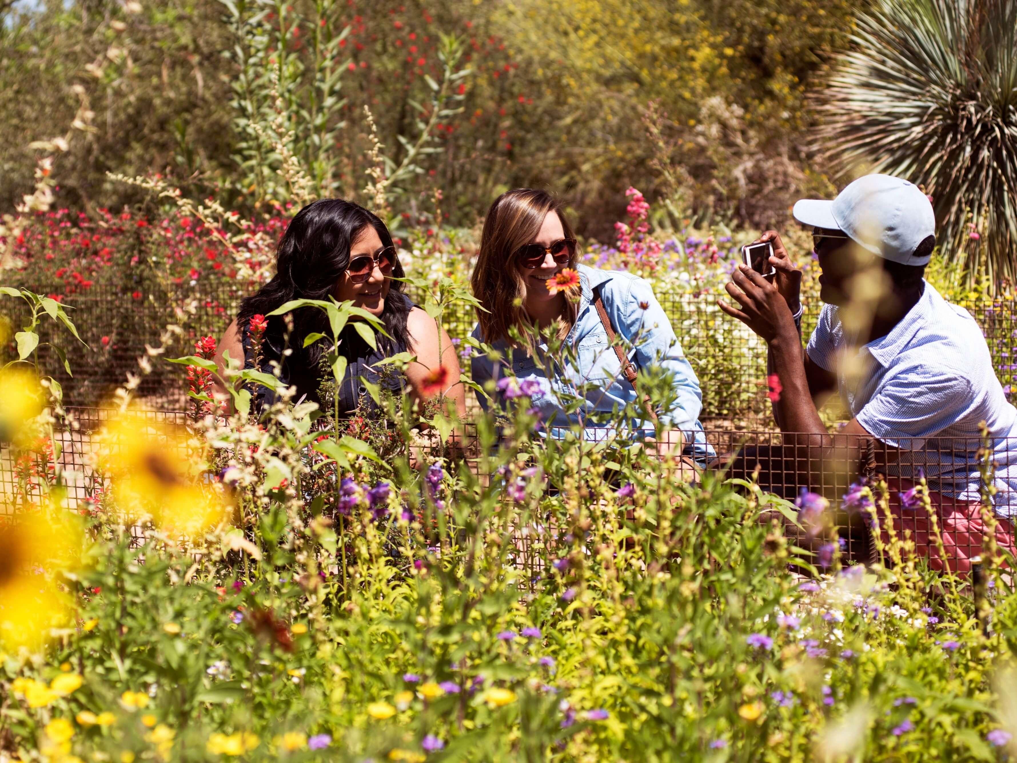 woman at desert botanical garden